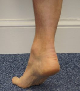 Toe In Single Leg Calf Raise from Floor